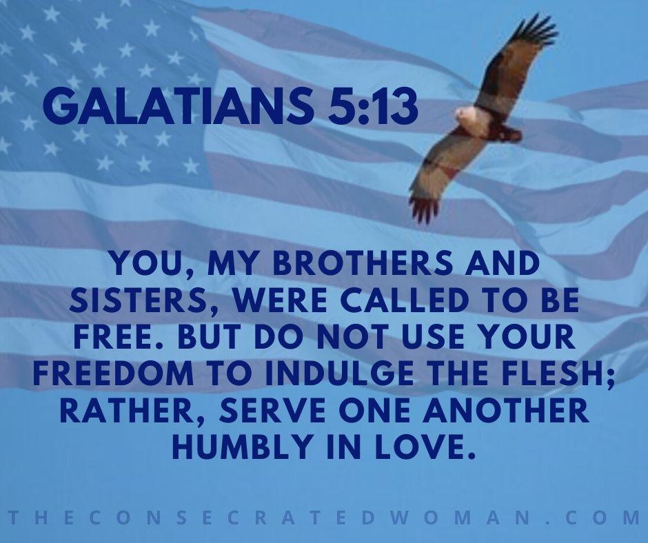 Galatians 5 13