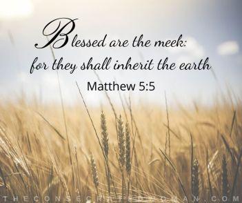 Matthew 5 5