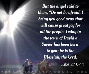 Luke 2 10-11.jpg