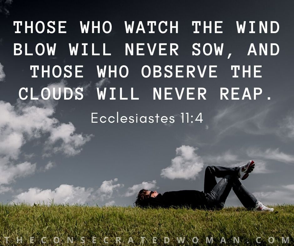 Ecclesiastes 11 4