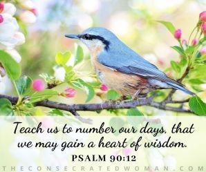 Psalm 90 12.jpg