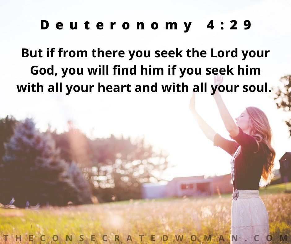 Deuteronomy 4 29