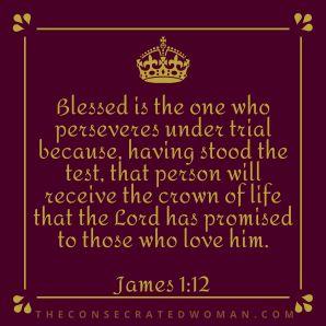 James 1 12 2