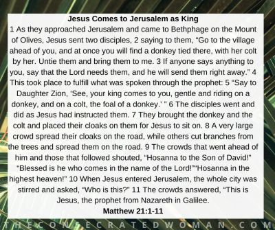 Matthew 21 1-11