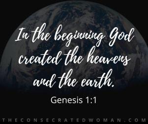 Genesis 1 1