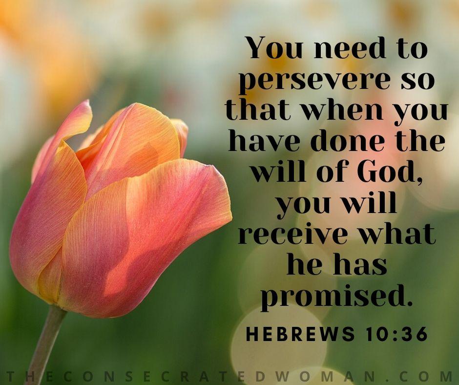Hebrews 10 36 2