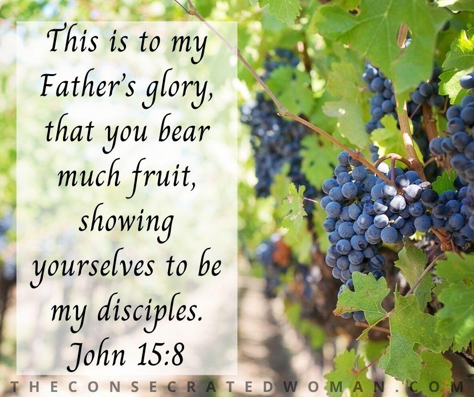 John 15 8 2