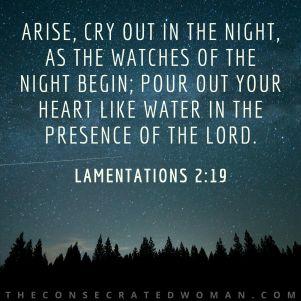 Lamentations 2 19