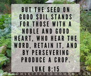 Luke 8 15