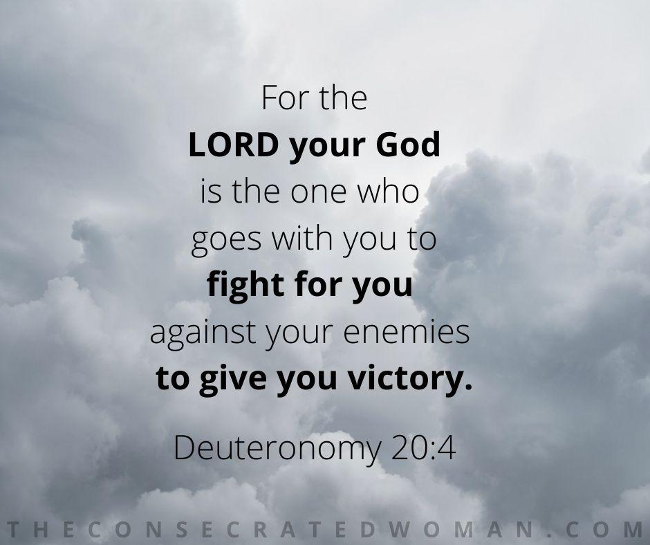 Deuteronomy 20 4