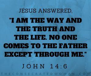 John 14 6 (4)