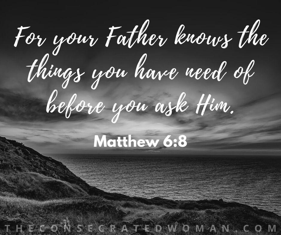 Matthew 6 8