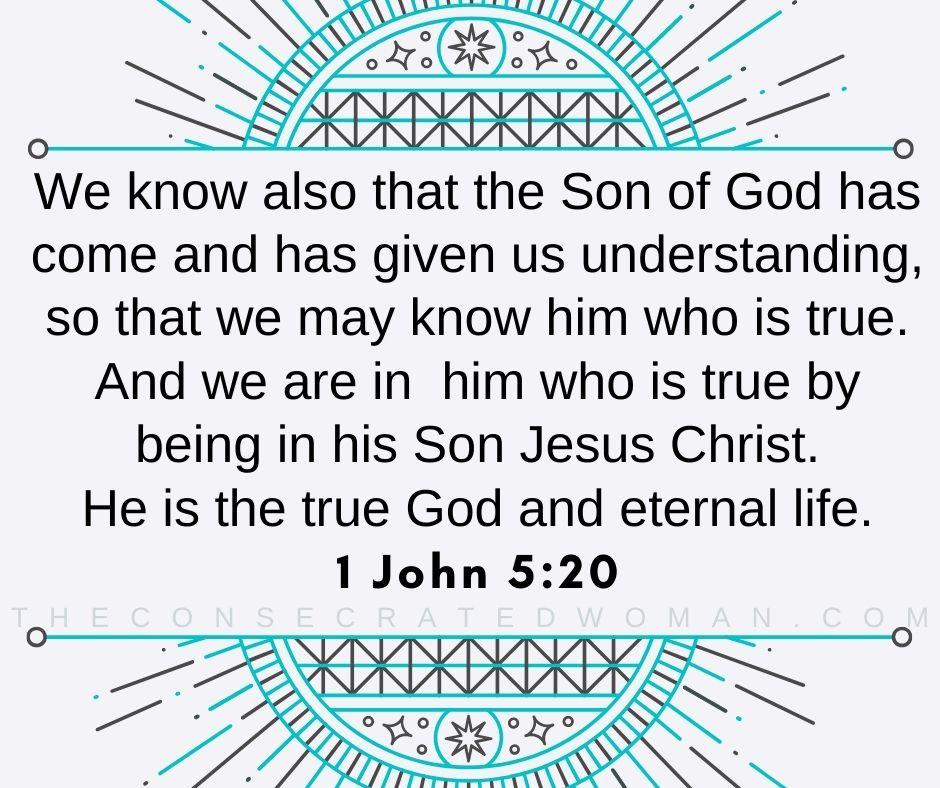 1 John 5 20